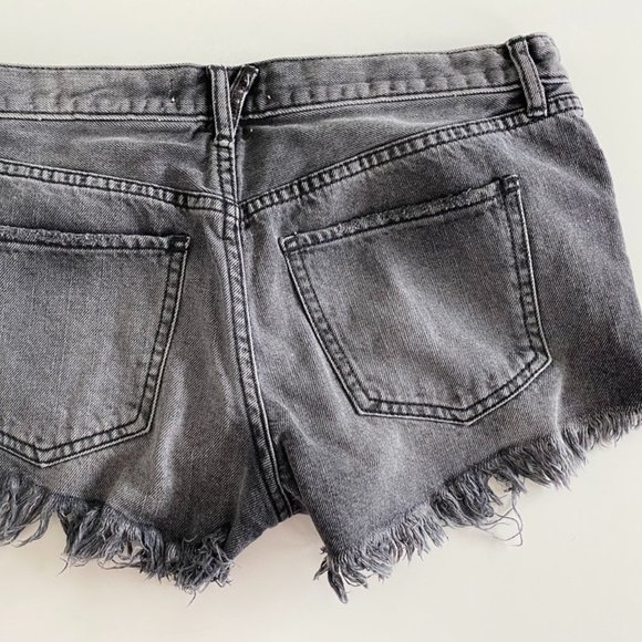 Free People Gray Low Rise Shorts